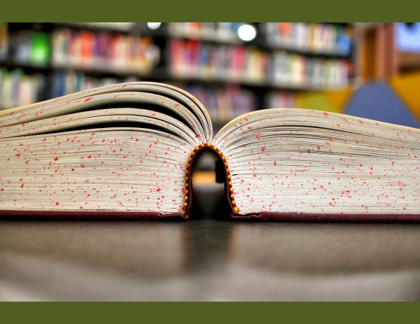 5 գրքեր սկսնակ քոփիրայթրների համար